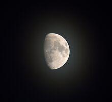 Misty Moon by Sue Robinson