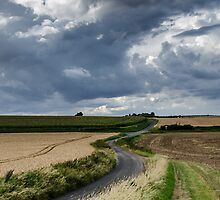 Cambridgeshire Lanes by worldwidewayman