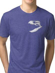 Rhynchosaurs Sure Are Weird - 4 Tri-blend T-Shirt