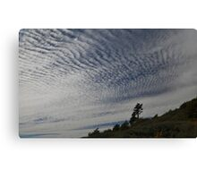 """ Big Sky "" Canvas Print"