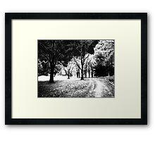 Maudslay Spirit Path   Framed Print