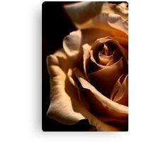 Morning coffee, with Rose Canvas Print