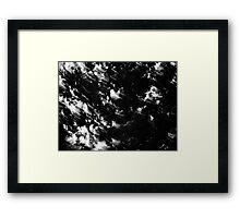 Wind through the tree Framed Print