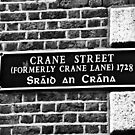 Dublin in Mono: Sráid An Crána by Denise Abé