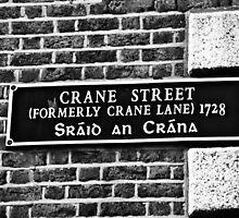 Dublin in Mono: Sráid An Crána by Denise Abé