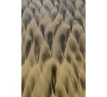 Cloaked crowd in the sand Photographic Print