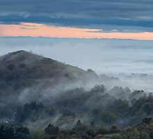 Rising through the Mist, Malvern Hills, Worcestershire by Cliff Williams