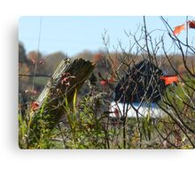 The Country Fence Canvas Print