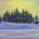 Winter Shorline by bevmorgan