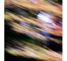 Harvest Moon... Photographic Print