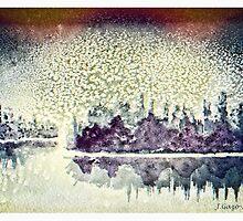 Dome of Snow by Jo-Anne Gazo-McKim