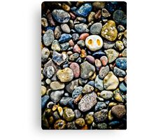 The Ghost on the Pebble Beach Canvas Print