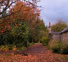 Greenbank Gardens, Garden Walk by ElsT