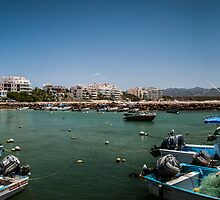 Punta Mita Harbor, Mexico by Rick Ruppenthal