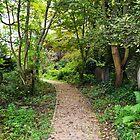 Forgotten cemetery by bobbykim666