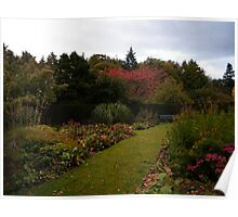 Flowers at Greenbank Gardens Poster