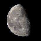 Waning Last Quarter Half Moon by Richard J. Bartlett