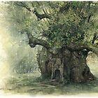 The Faery Tree by JBMonge