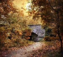 Twilight Trail by Jessica Jenney