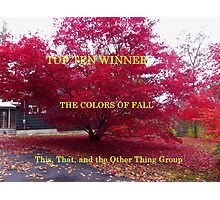 top Ten - Colors of Fall Photographic Print