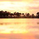 Florida Wildlife by Gouzelka