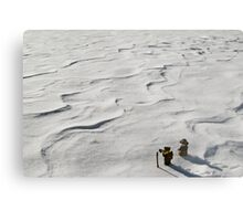 Winter Hike Metal Print