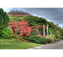 The Sun Pavilion Photographic Print