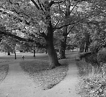 Autumn in the Park - Black and White by Artberry