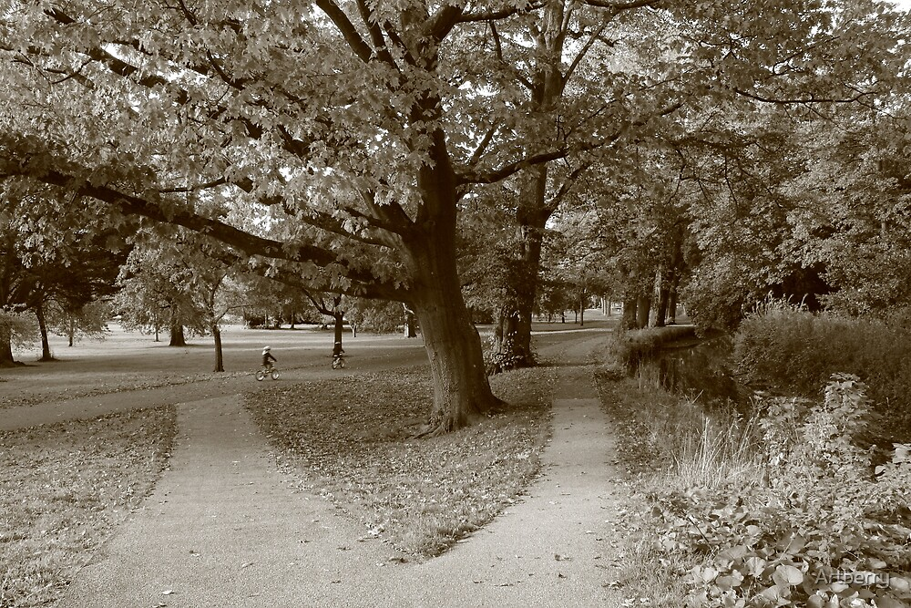 Autumn in the Park - Sepia Toned BW by Artberry