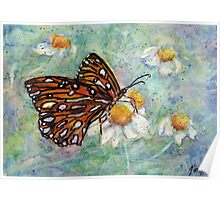 Daisies Delight - Butterfly Poster