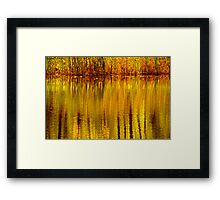 Autumn Water Reflection Abstract II Framed Print