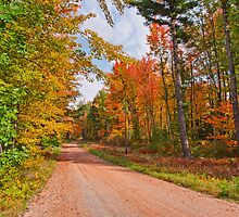 Fall in Wisconsin by JohnDSmith
