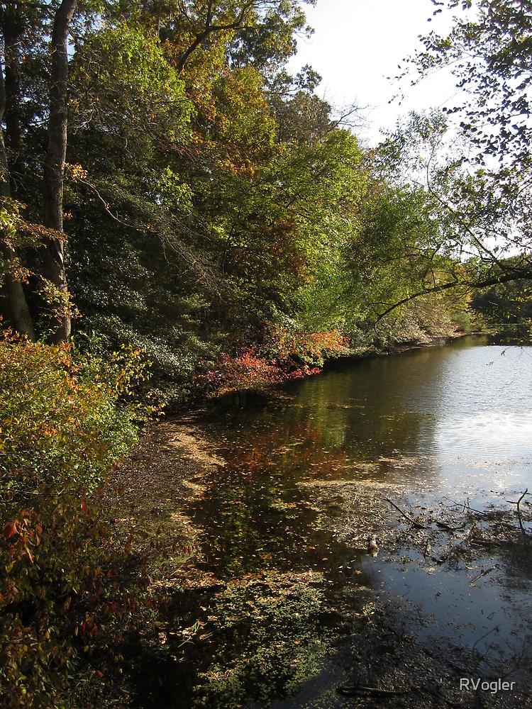 Water Fall by RVogler