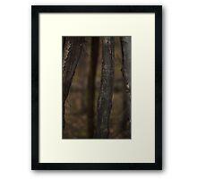 Nose Hill Park Framed Print