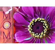 Mom, Zinnia Macro Photograph, Floral Design Photographic Print