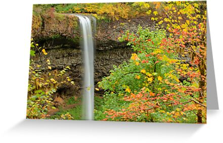 South Falls, Silver Falls State Park by Jim Stiles