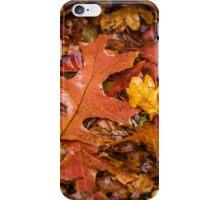 Autumn  iPhone Case/Skin