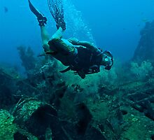 DIVER DOWN! by NICK COBURN PHILLIPS