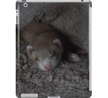 Sleeping Jelli iPad Case/Skin