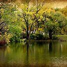Lagoon © by Dawn M. Becker