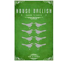 House Baelish Photographic Print
