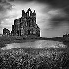 Whitby Abbey by Paul Davis