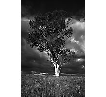 A force of nature Photographic Print