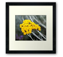 nice yellow flower bokeh Framed Print