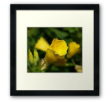 Yellow tube flower Framed Print