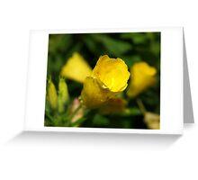 Yellow tube flower Greeting Card