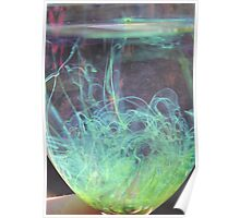 Grass in a glass Poster
