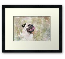 Pug Happiness Framed Print