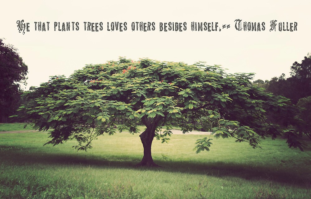 He That Plants Trees Loves Others Beside Himself by Carol Knudsen