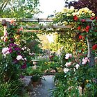 The Rose Trellis  by sandysartstudio